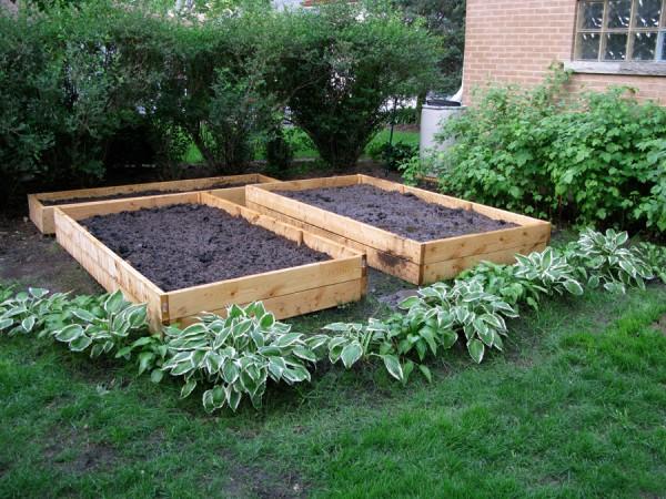 Garden with Soil