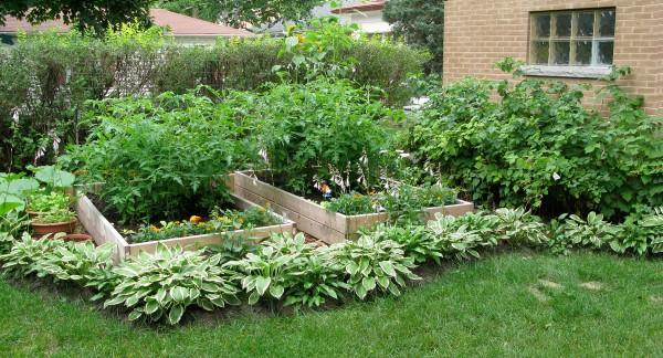 garden20090724_01